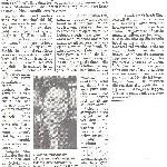 Telegraaf 26 mei 2014